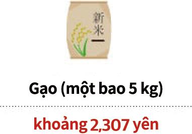 Gạo (một bao 5 kg)