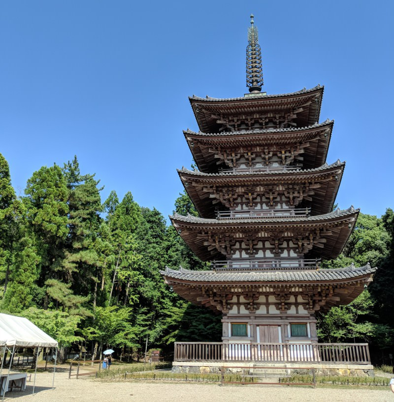 Learn About World Heritage Sites in Kyoto! (Daigo-ji Temple)