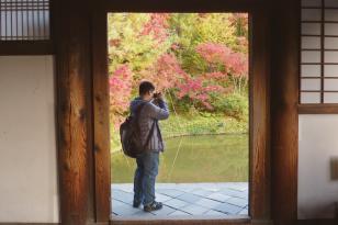 Trải nghiệm văn hóa Nhật khi đến thăm ngôi chùa với khu vườn tuyệt đẹp Kodaiji